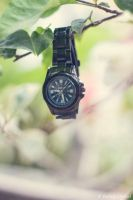 TIME by VarArt9