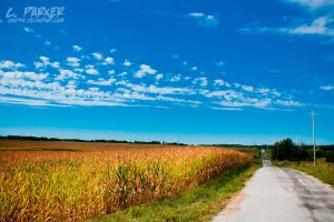 Midwest by Vand3r