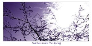 Fractals from the Spring by velenux
