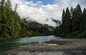 Avalanche Creek  by TRunna