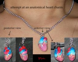 Anatomical Heart Charm Attempt by YYHyasha
