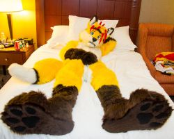 Fox Bed Paws by LightningTheFox7