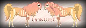 Donuese Ref by Drasayer