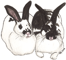 Sister Bunnies painting by Groovygirlsuzy17