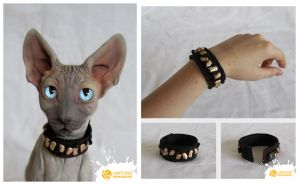 Sphynx Cat #2 of limited edition by LimitlessEndeavours