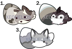 Fluffy Hatchling Adoptables Set 4: CLOSED by Xeohelios
