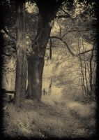 along the cemetery path by Theriom-Rasputin