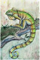 Green Iguana by FriendlyChestnut