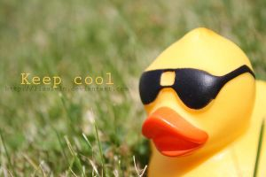 keep cool by Lisa-Schneider