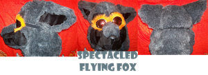 Spectacled flying fox :SOLD: by MagicLocket