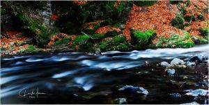 river by PhotographyChris