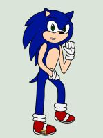 .:Remake:. I'm Sonic the Hedgehog! by sonicandshadowcaught