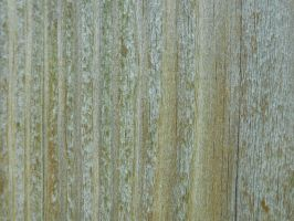 Wood Grain Texture 1 by Orangen-Stock