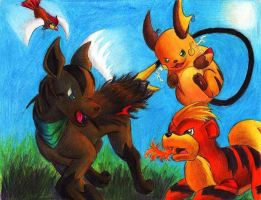 Double Battle with firefox by Cskia