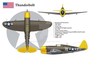 P-47D USA 23FS 3-View by WS-Clave