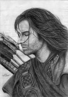 My Kili by Kalvedia