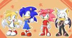 Sonic's Alternate Dimension by Domestic-hedgehog