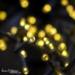 .:The Yule Lights:. by Manon-Blutsanguen