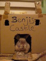Benjis Castle by Aura3107