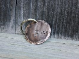 Bronze Pet ID Tag by duckey5