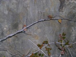 Rocky Texture 11 by bloodlust-stock