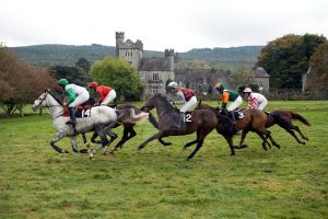 Gurteen point to point race 5 by Cyril-Helnwein