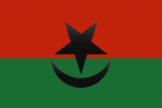 Red Green Axis, Alliance, Flag A by CaciqueCaribe