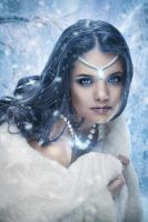 Snow Queen by Dimm-on