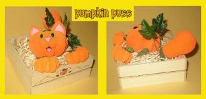 Small Pumpkin Puss by crokittycats
