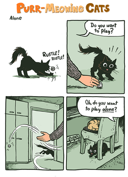 how to keep cat from meowing in the morning