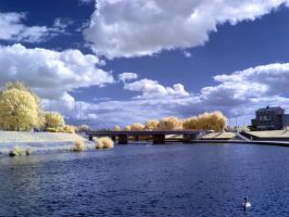 The River Exe in infrared: View 15 by yaschaeffer
