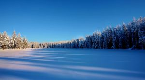 blue and white by KariLiimatainen