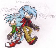 GIFT: Topaz and Flash by SailorMoonAndSonicX