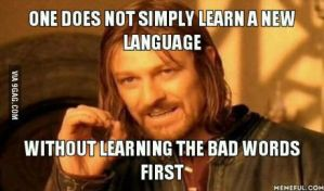 One does not simply learn a new language by cosenza987