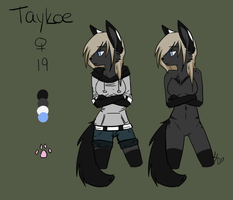 Official Taykoe Reference 2013 by xTaeko