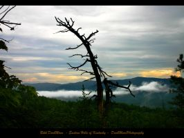 EasternKentucky-0280-WP-Master by darkmoonphoto