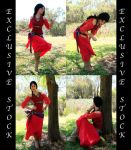 Exclusive gypsy2 by faestock