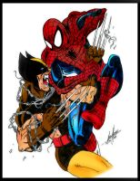 Spidey VS Wolverine by Balla-Bdog