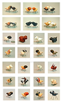 Mini Sheep Toys by EatToast