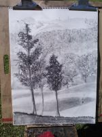 Aerial in Charcoal by absotivelyposolutely