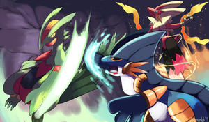 Hoenn Mega Starters in a Mega Battle by Phatmon66