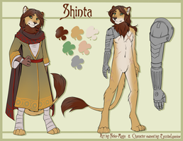 Shinta Reference by Neotheta