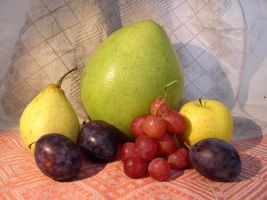 Fruit Composition 22 by SanStock