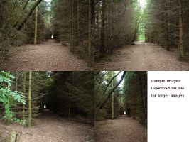 Forest backgrounds by xNatje-stock