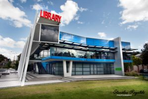 Modern Library by RaynePhotography