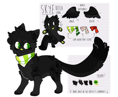 2013 // Skye Reference OUTDATED by toumeis