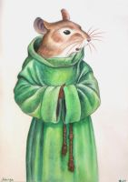Matthias of Redwall by munchengirl