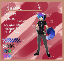 :Human Vinabe:Reference Sheet 2013: by Vinabe