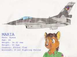 Maria and her F-16 by DingoPatagonico