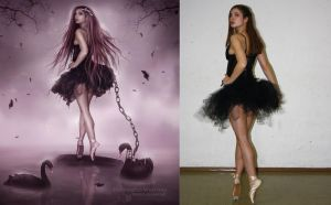 Black Swan Before and After by EnchantedWhispersArt